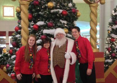 Santa Kelly - spectacular real beard Santa for malls