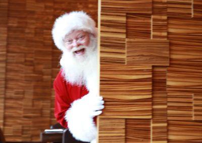 Santa Kelly Real Beard Santa for hire