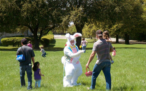 Easter bunny at play